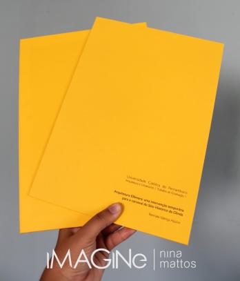 capas revestidas em papel amarelo-luz-do-sol